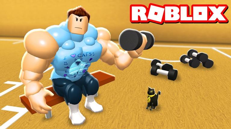 Muscle Simulator Codes
