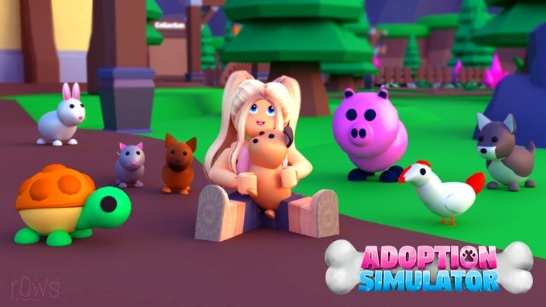 Adoption Simulator Codes
