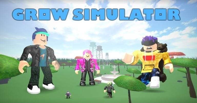 Grow Old Simulator Codes